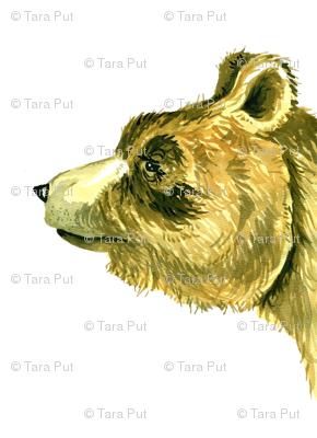 bear_5a