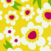 Daisy_pop_yellow_shop_thumb