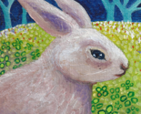 Rabbit_serious_cropped_thumb