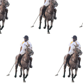 Carriage Trade Polo White