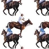 Carriage Trade Polo Melee White