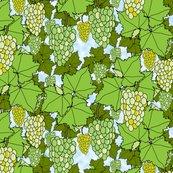Rrrfresh_grapes_green_day_3_shop_thumb
