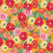 Rr03_daisies_flat_shop_thumb