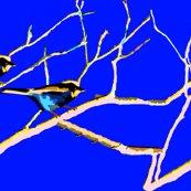 Rroct.-nov._10_010_ed_ed_ed_ed_ed_ed_ed_ed_ed_shop_thumb