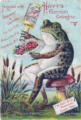 German Cologne Frog