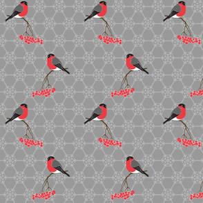 Bullfinches on grey