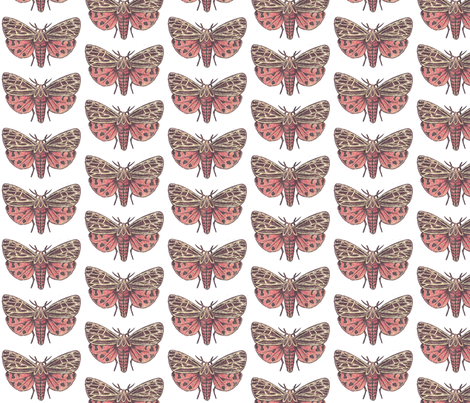 Small Tiger Moth fabric by holiday on Spoonflower - custom fabric