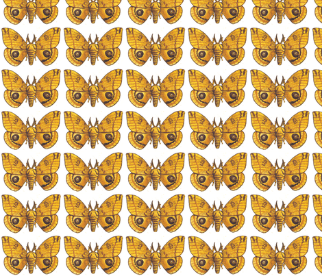 Io Moth fabric by holiday on Spoonflower - custom fabric