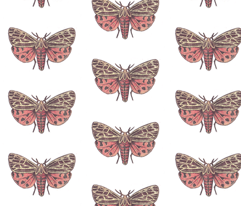 Medium Tiger Moth fabric by holiday on Spoonflower - custom fabric