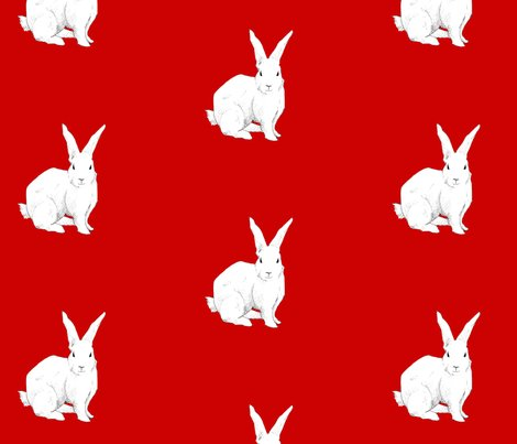 Rrrrabbit_red_ed_shop_preview