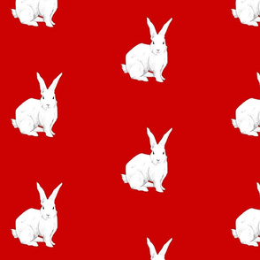 Rrrrabbit_red_ed_shop_thumb