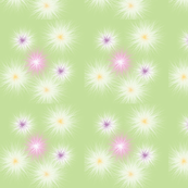 Spring_01_dandelion
