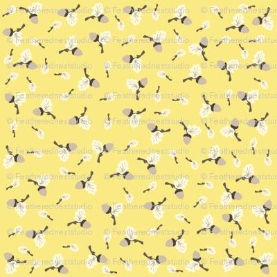 yellow_acorn
