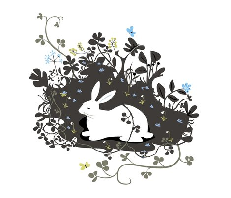 Rrlarge_rabbit_shop_preview