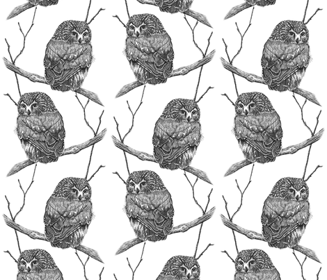 Sawhet Owl Pointillism 2 fabric by theartfulhorse on Spoonflower - custom fabric