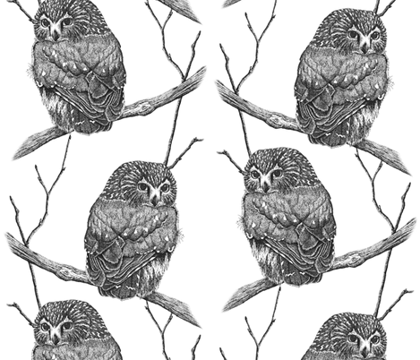 Sawhet Owl Pen n Ink Pointillism Large fabric by ravenwoodstudiodesigns on Spoonflower - custom fabric