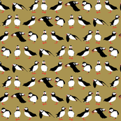 just puffins brown small