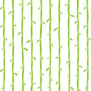 bamboo 6inch