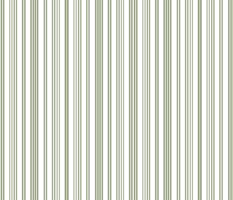 Stripe Stripe (Olive)