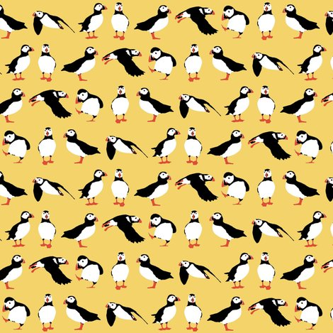 R_yellow_puffins_2015_st_sf_shop_preview