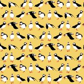 R_yellow_puffins_2015_st_sf_shop_thumb