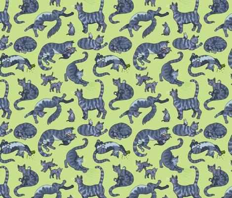 Rrrrrgrey-tiger-cats_shop_preview