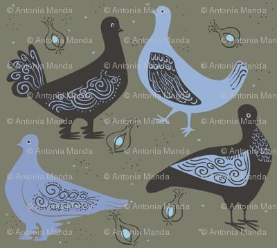 fancy_pigeons2