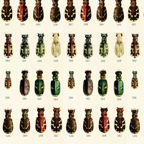 Colors of beetles fabric by ravynka on Spoonflower - custom fabric