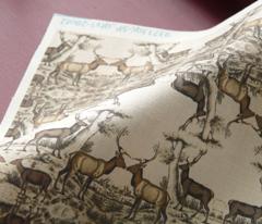 vintage print - deers