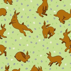 Brown rabbits in a field of flowers