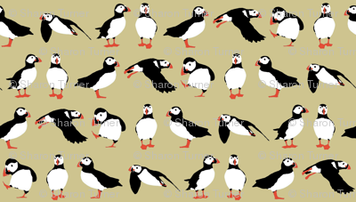 just puffins buff small