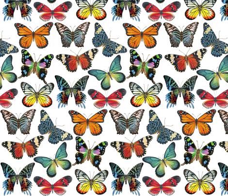Butterfly Paintings fabric by angelaanderson on Spoonflower - custom fabric
