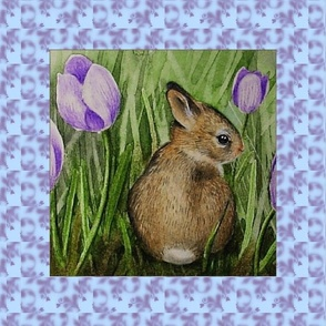 Cute Bunny in Crocus