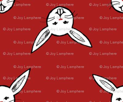 polka bunnies