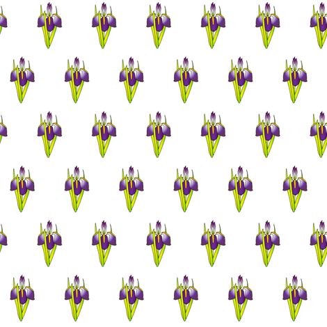 pattern_-_iris fabric by glimmericks on Spoonflower - custom fabric