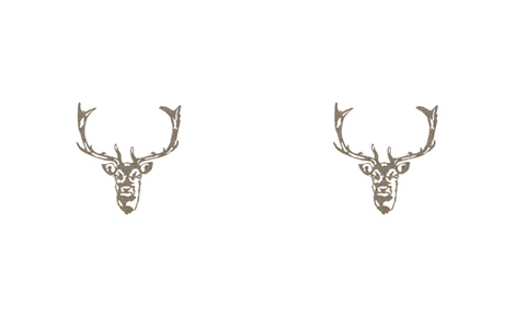 Custom: Wild Welsh Stag fabric by kristopherk on Spoonflower - custom fabric