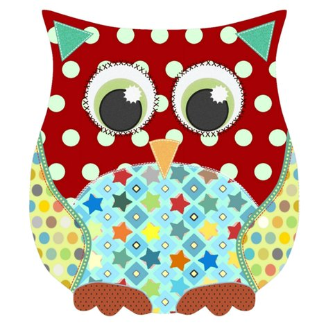 Rappliqu__patch_boy_owl_g4_st_sf_shop_preview