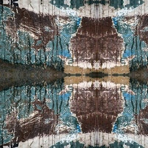 Manzanillo Canoe Rust