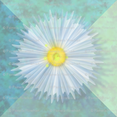 ©2011 diaphanous daisies