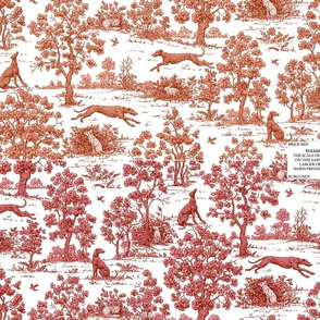 Greyhound toile sampler #2--WALLPAPER SWATCH ONLY