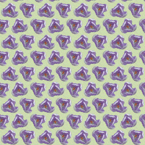 Crocus  fabric by theboerwar on Spoonflower - custom fabric