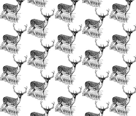 Rrr44736_deer_shop_preview