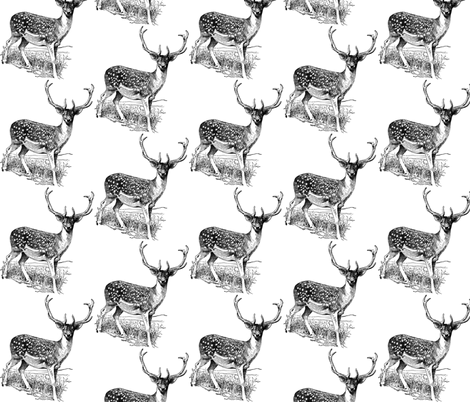 Oh Deer! fabric by myracle on Spoonflower - custom fabric