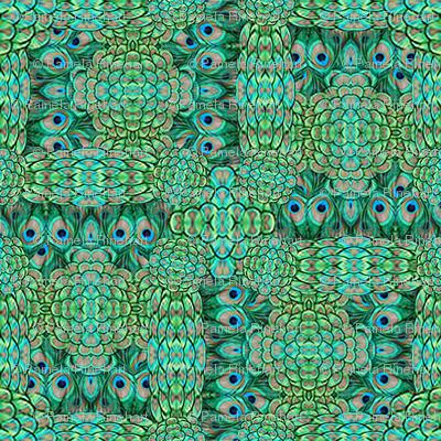 ©2011 peacock-7