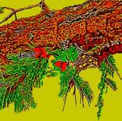 Rrrtopanga-birds_etc.june__09_023_ed_ed_ed_ed_ed_ed_ed_ed_ed_ed_ed_shop_thumb