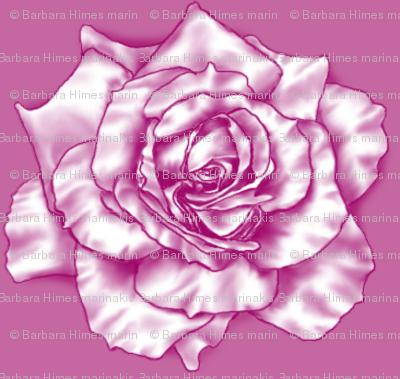 Rose Clones