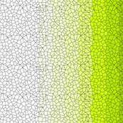Rrrresized_long_gradient_voronoi_shop_thumb