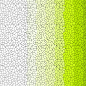 Gradient Voronoi - Rescaled - Single Mirror- Amy Lee