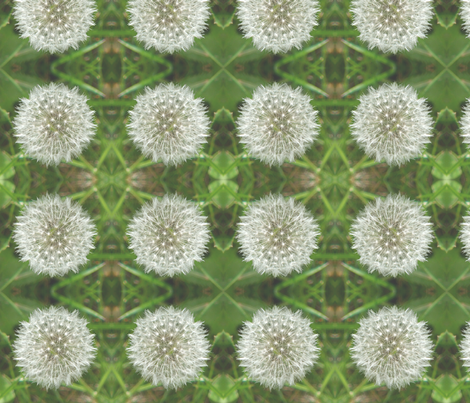 Dandelion fabric by nezumiworld on Spoonflower - custom fabric