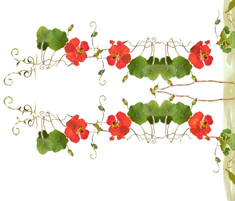 Nasturtium-chairbk-red_shop_preview